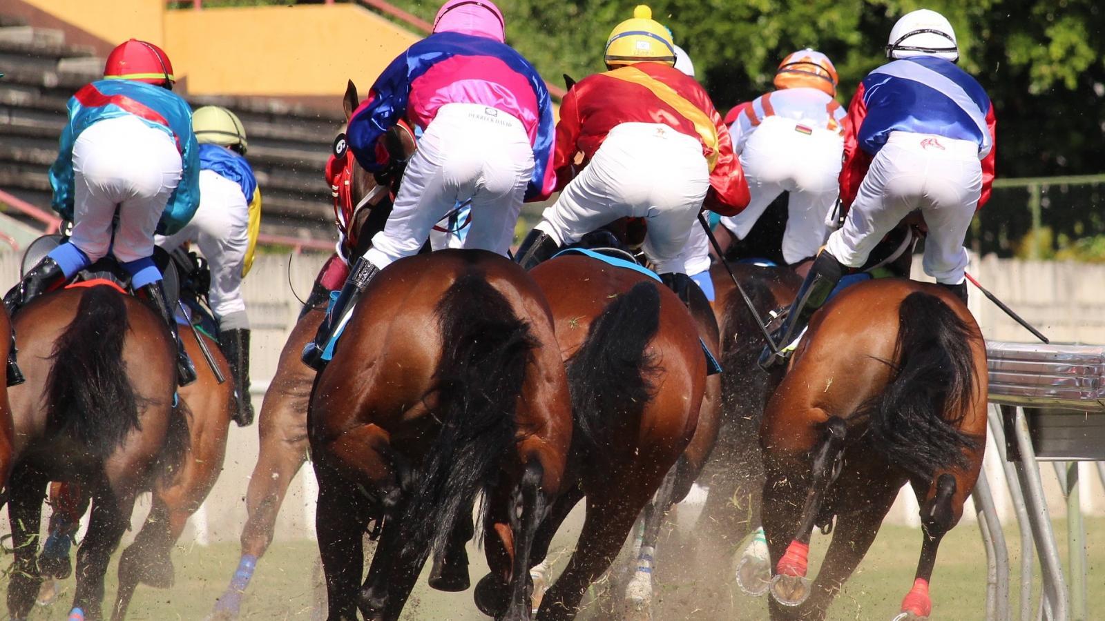 Vibrez aux galops du Grand Prix de l'Arc de Triomphe !
